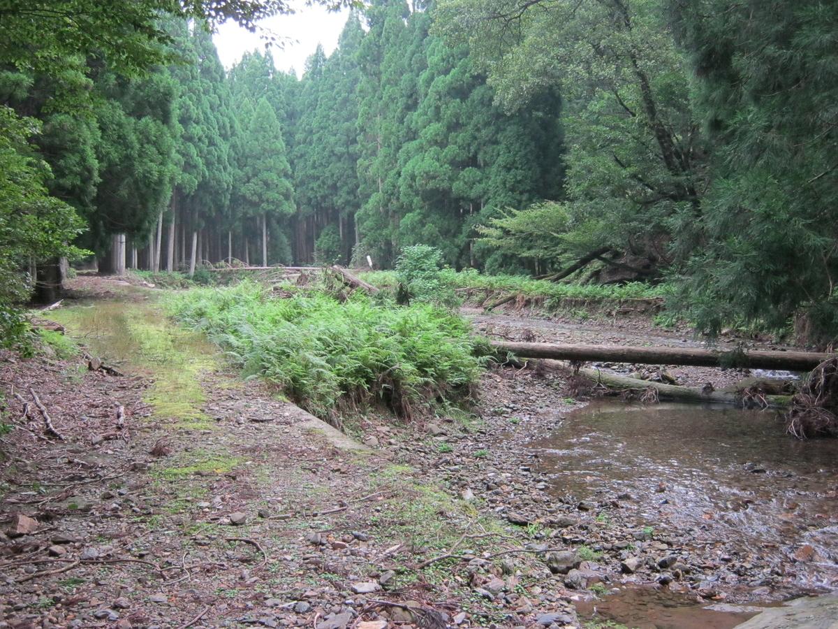 f:id:shiganosato-goto:20191127124423j:plain