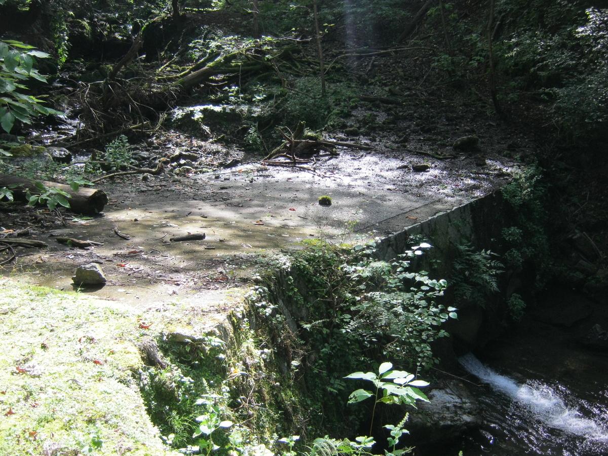 f:id:shiganosato-goto:20191130223403j:plain