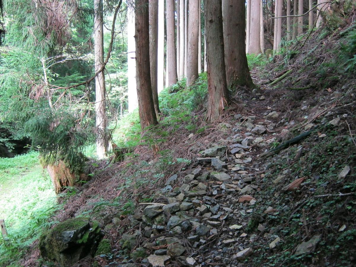 f:id:shiganosato-goto:20191130224605j:plain