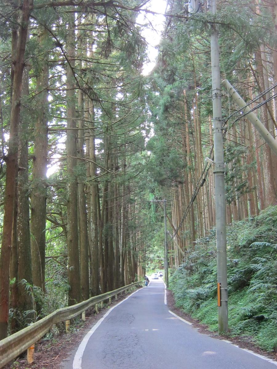f:id:shiganosato-goto:20191203071433j:plain