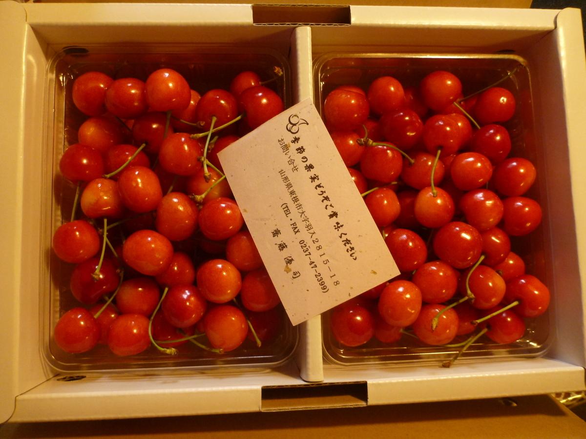 f:id:shiganosato-goto:20191220184349j:plain