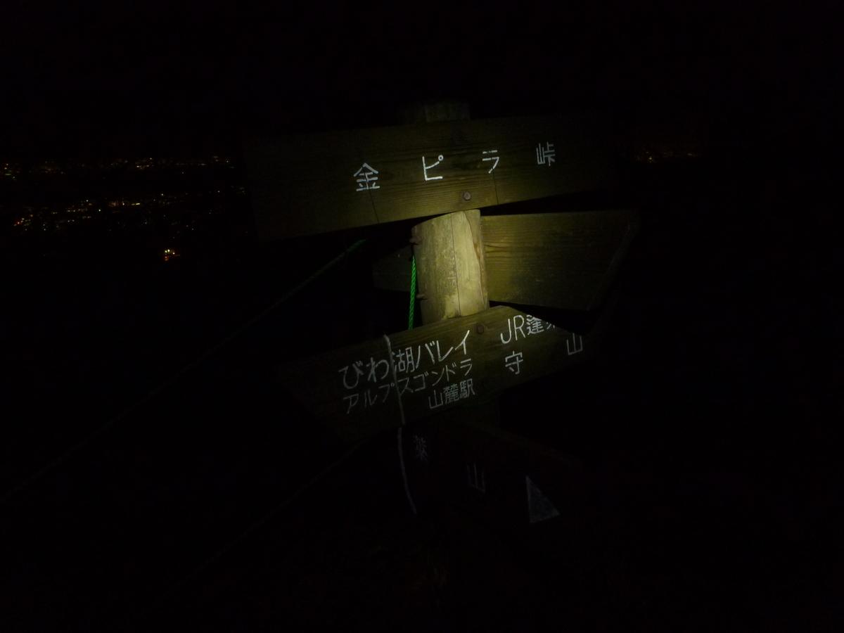 f:id:shiganosato-goto:20200328113804j:plain