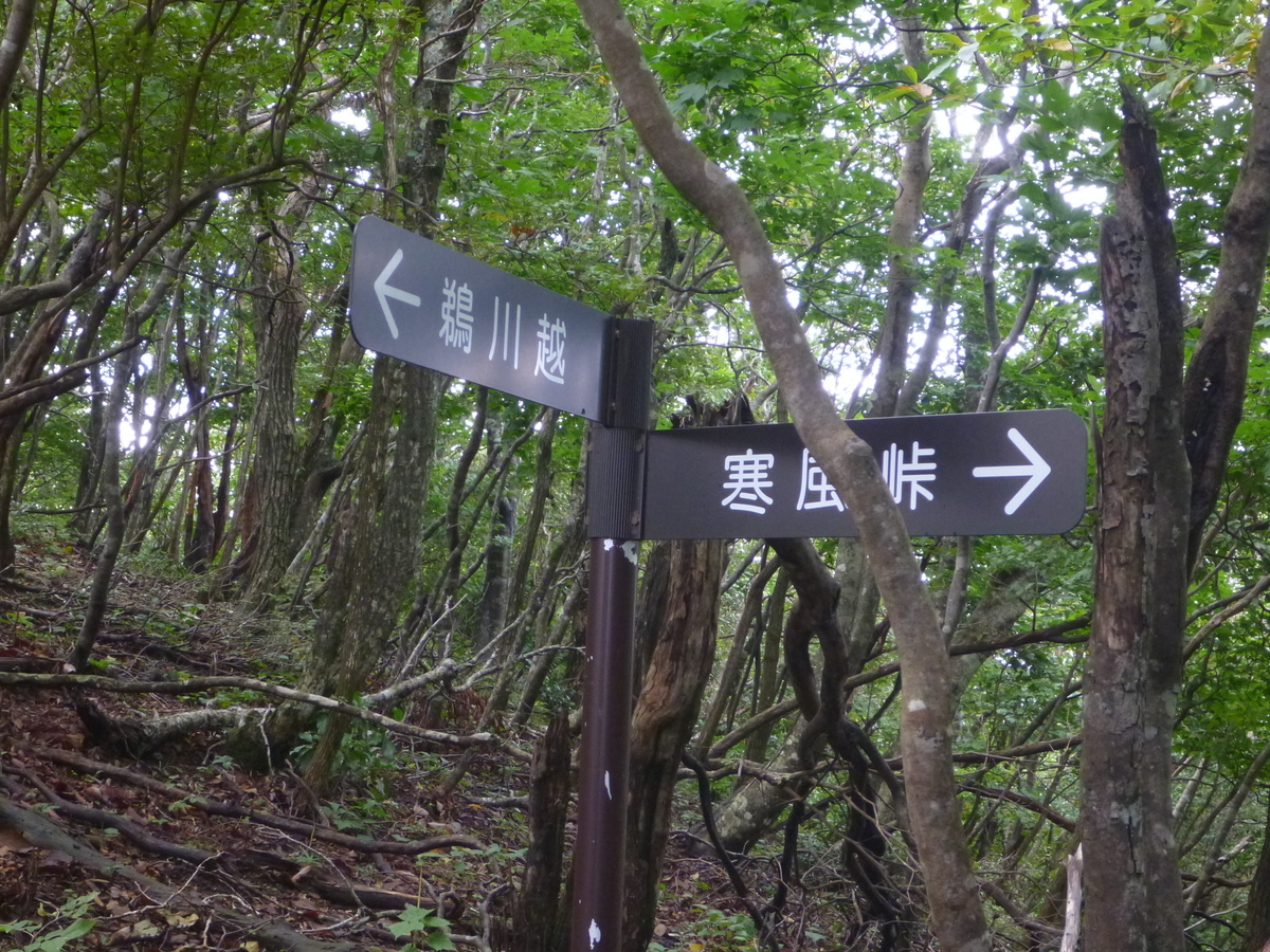 f:id:shiganosato-goto:20201003143610j:plain