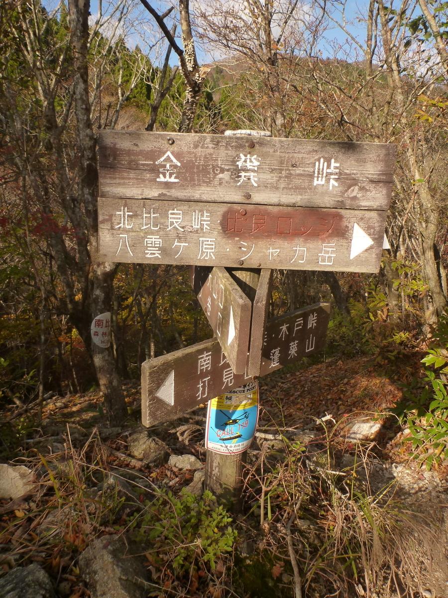 f:id:shiganosato-goto:20201107175639j:plain