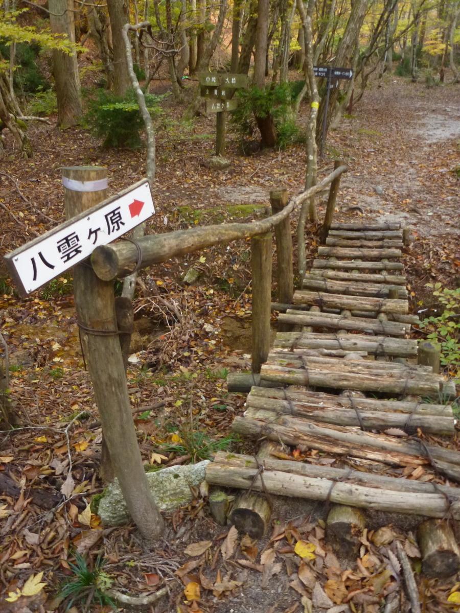 f:id:shiganosato-goto:20201107193223j:plain
