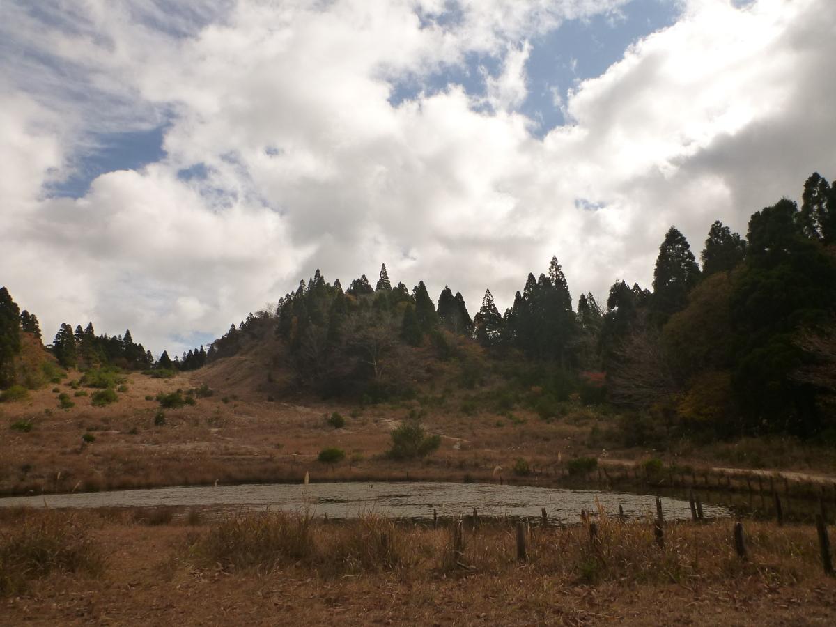 f:id:shiganosato-goto:20201107195325j:plain