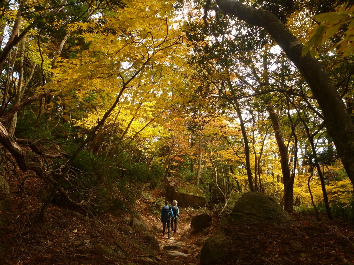 f:id:shiganosato-goto:20201107201933j:plain
