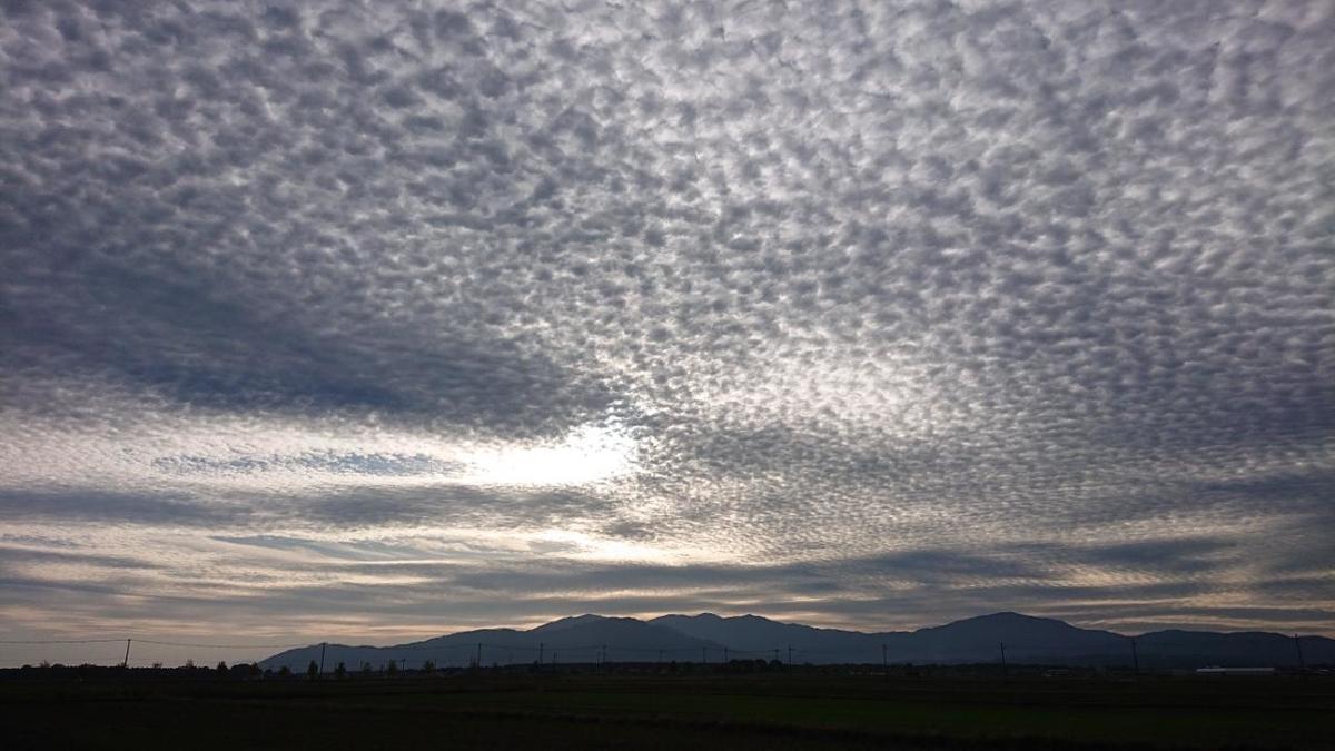 f:id:shiganosato-goto:20201123162916j:plain