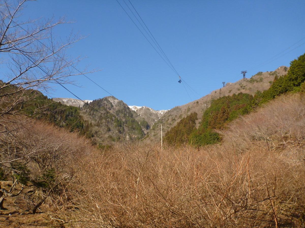 f:id:shiganosato-goto:20210120225328j:plain
