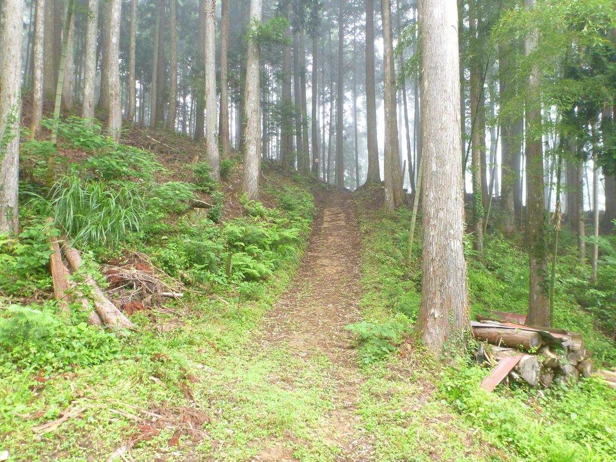 f:id:shiganosato-goto:20210203101531j:plain