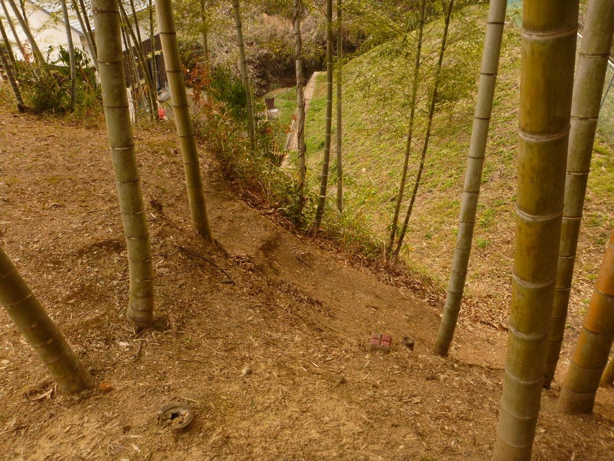 f:id:shiganosato-goto:20210216172153j:plain
