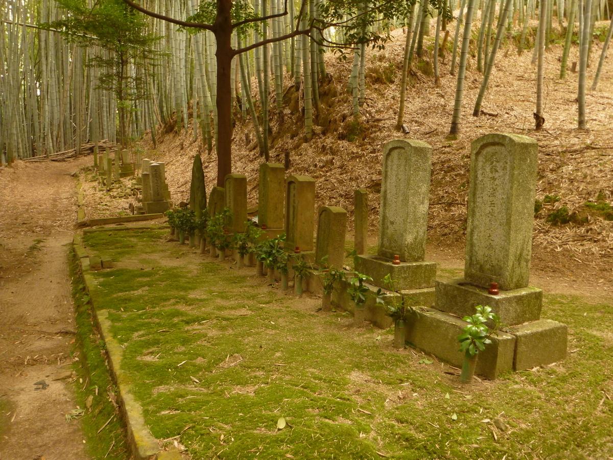 f:id:shiganosato-goto:20210216174216j:plain