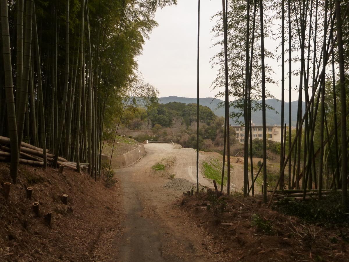 f:id:shiganosato-goto:20210216175808j:plain