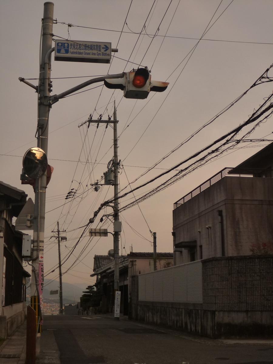 f:id:shiganosato-goto:20210217214632j:plain