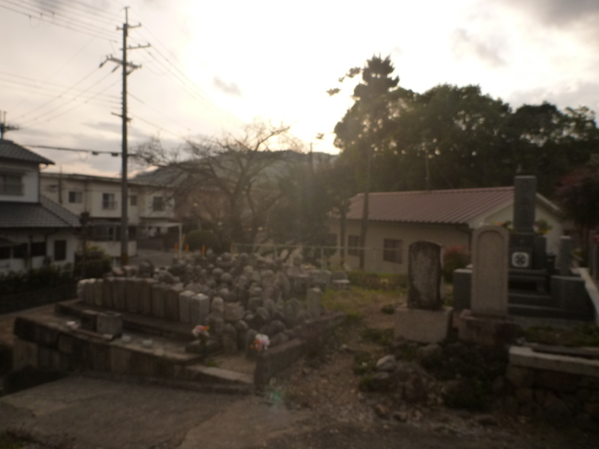 f:id:shiganosato-goto:20210228104110j:plain