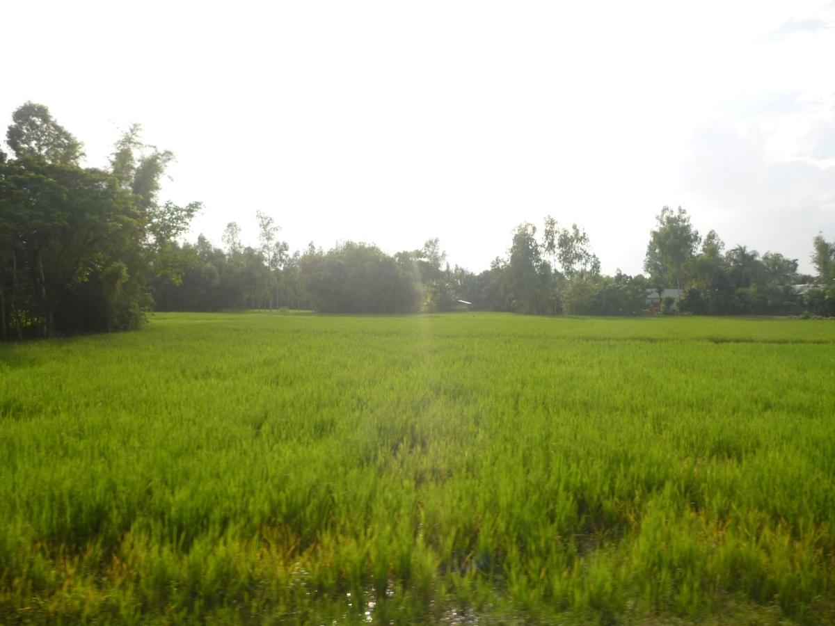 f:id:shiganosato-goto:20210414145802j:plain