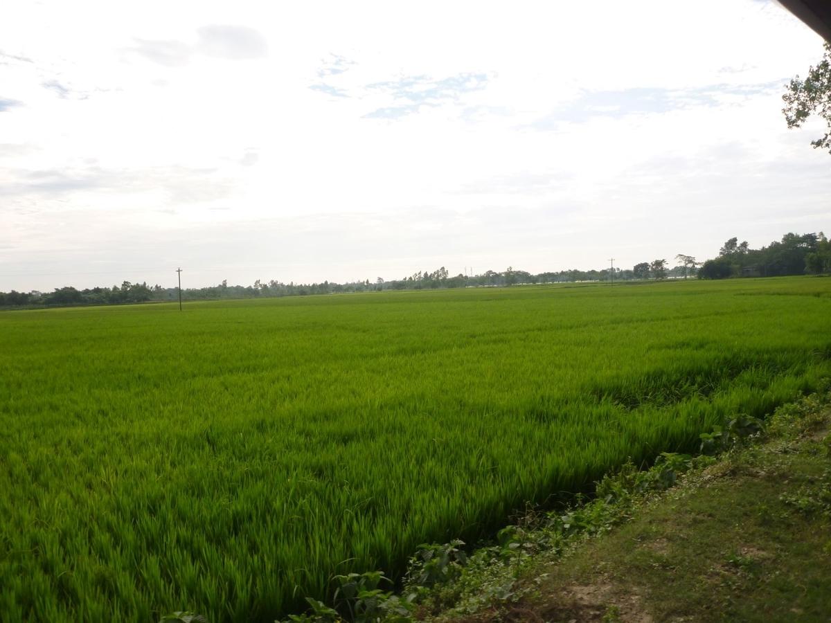 f:id:shiganosato-goto:20210414155512j:plain