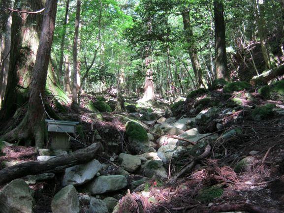 f:id:shiganosato-goto:20210614154707j:plain