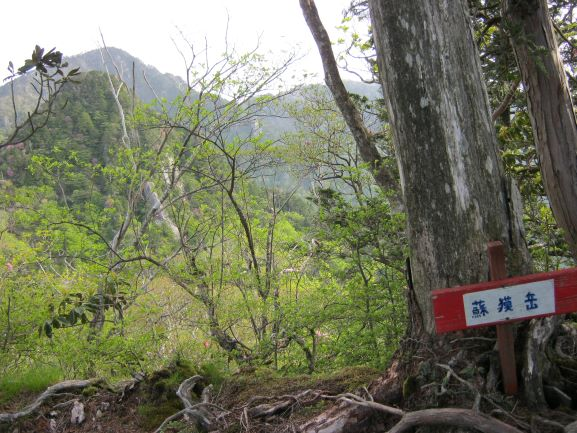 f:id:shiganosato-goto:20210614171613j:plain