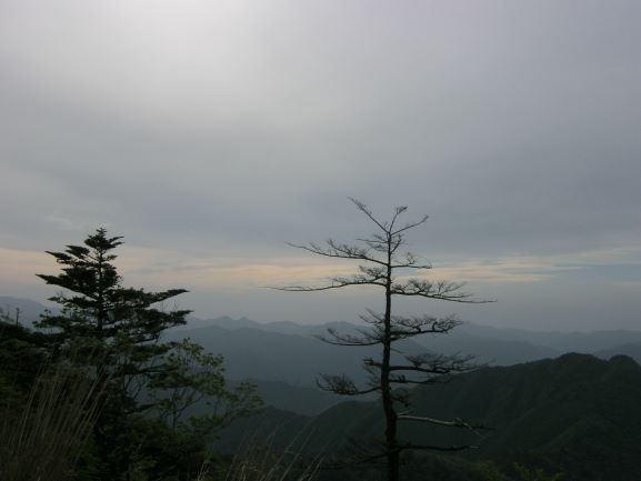 f:id:shiganosato-goto:20210614172416j:plain