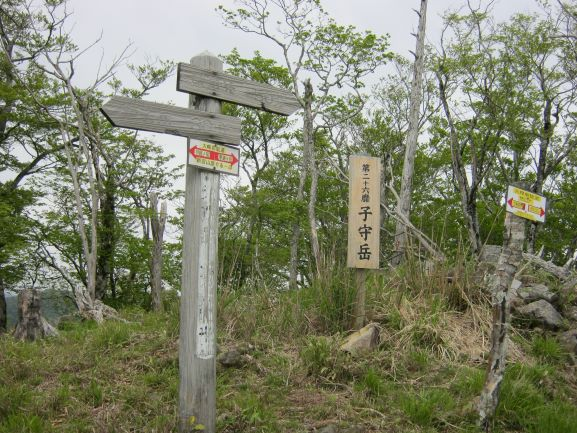 f:id:shiganosato-goto:20210614173535j:plain