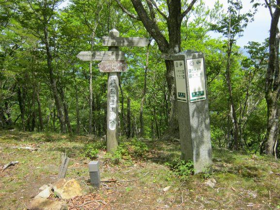 f:id:shiganosato-goto:20210614174411j:plain