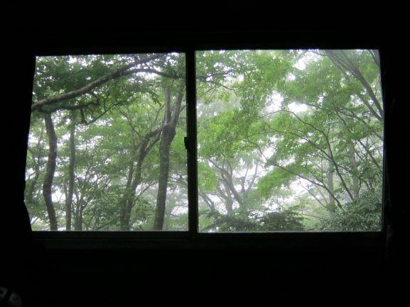 f:id:shiganosato-goto:20210614192031j:plain