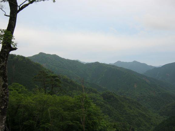 f:id:shiganosato-goto:20210614202730j:plain