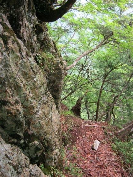 f:id:shiganosato-goto:20210615053944j:plain