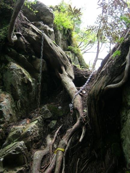 f:id:shiganosato-goto:20210615054328j:plain
