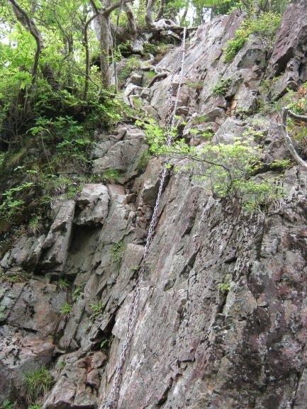f:id:shiganosato-goto:20210615054619j:plain