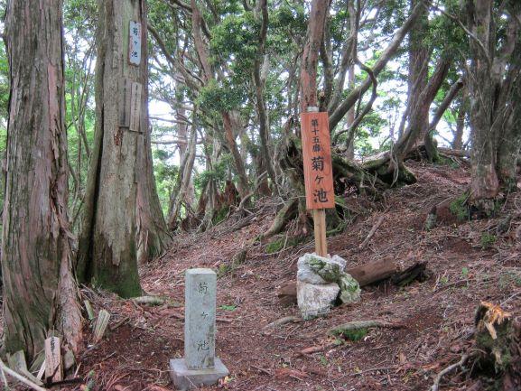 f:id:shiganosato-goto:20210615063800j:plain