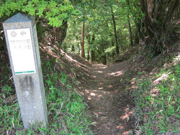 f:id:shiganosato-goto:20210615081501j:plain