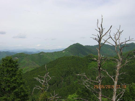f:id:shiganosato-goto:20210615112300j:plain