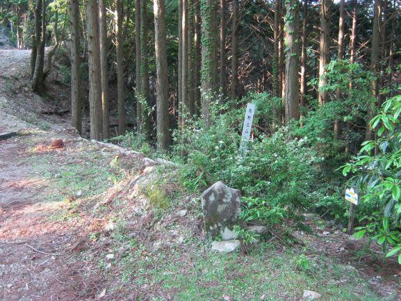 f:id:shiganosato-goto:20210615114028j:plain