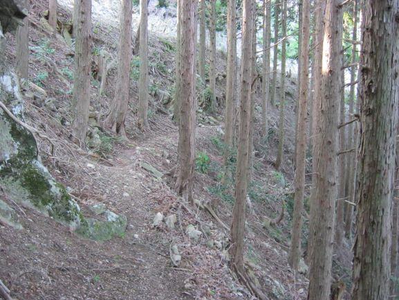f:id:shiganosato-goto:20210615125721j:plain