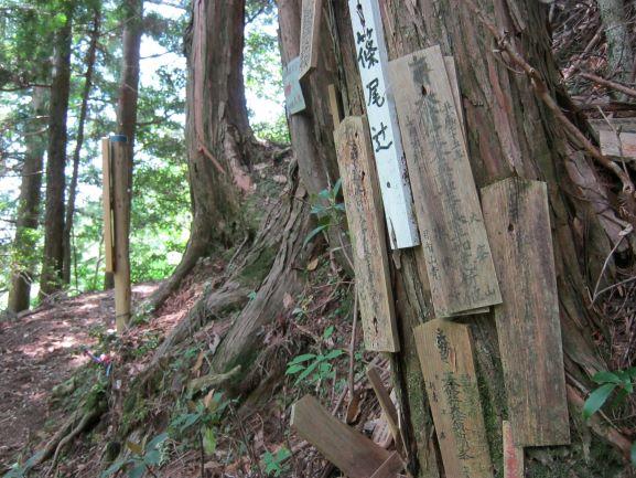 f:id:shiganosato-goto:20210615131850j:plain