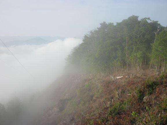 f:id:shiganosato-goto:20210615141833j:plain