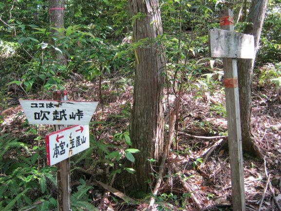 f:id:shiganosato-goto:20210615142759j:plain