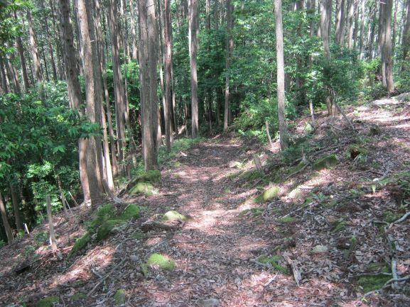 f:id:shiganosato-goto:20210615143905j:plain