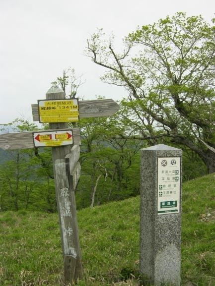 f:id:shiganosato-goto:20210616081104j:plain