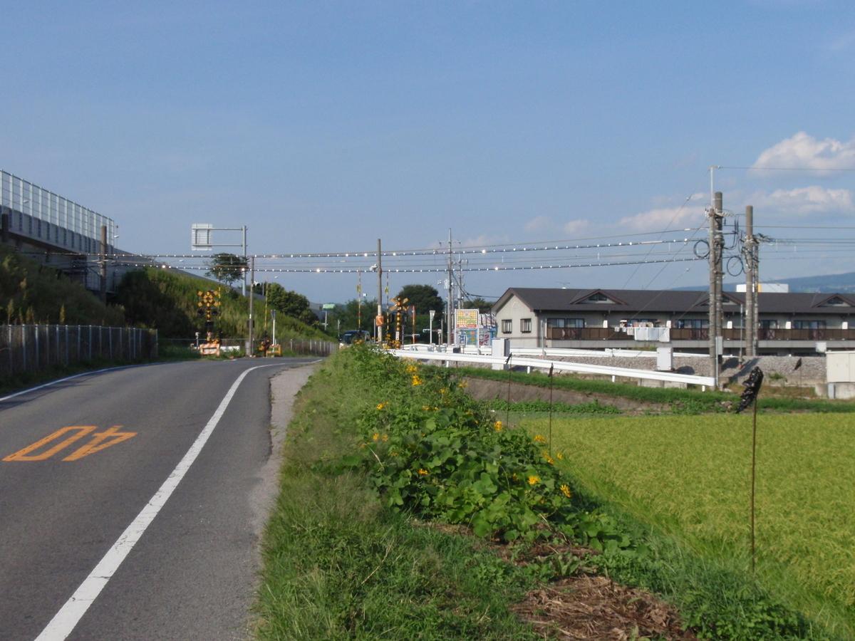 f:id:shigasaka:20201110202112j:plain