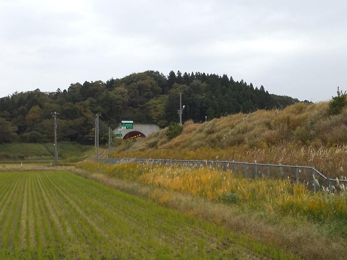 f:id:shigasaka:20210613150137j:plain