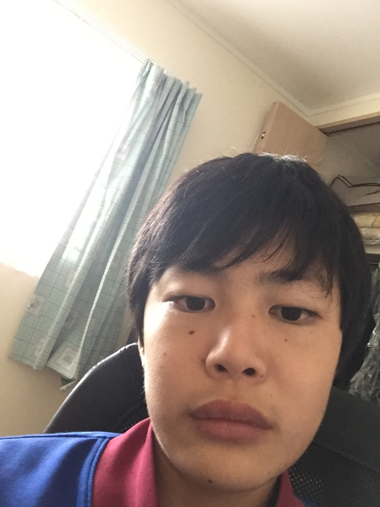 f:id:shige0517-gko:20170122103729j:plain