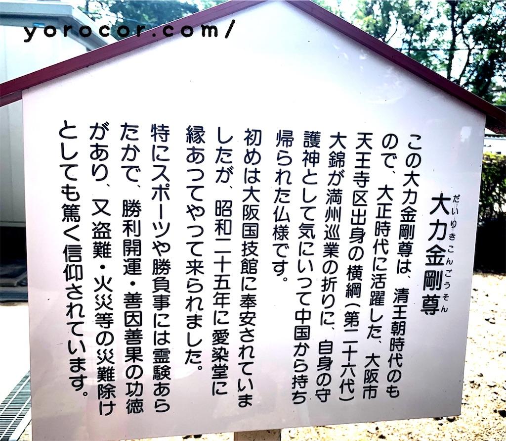 f:id:shigechikun:20190706170749j:image