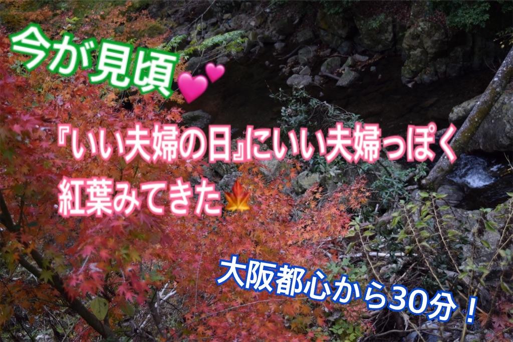 f:id:shigechikun:20191122154133j:image