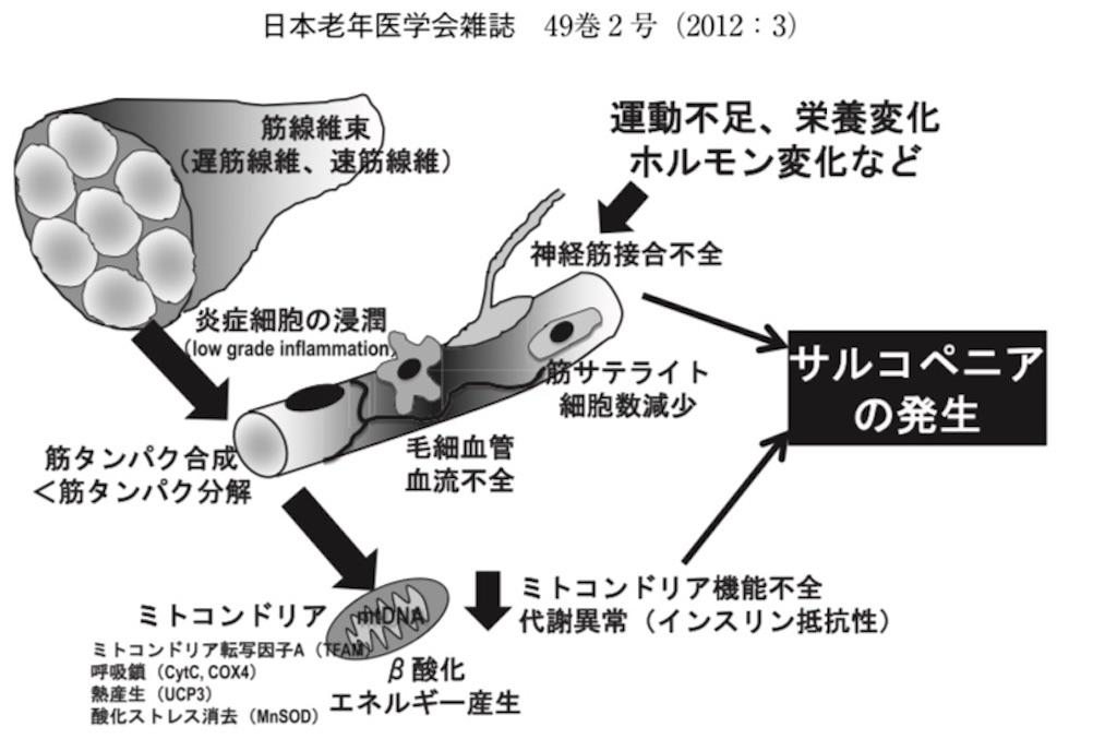 f:id:shigechikun:20200417203409j:image
