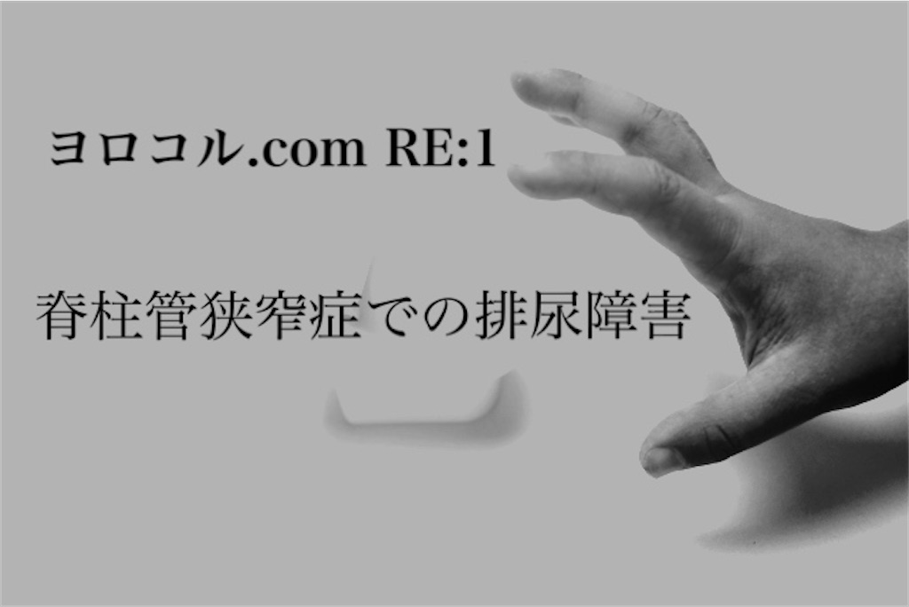 f:id:shigechikun:20200501210942j:image