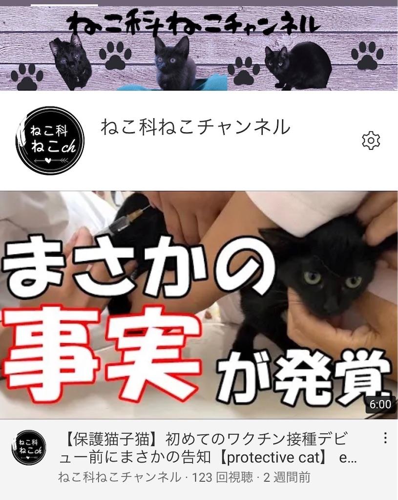f:id:shigechikun:20200912210939j:image