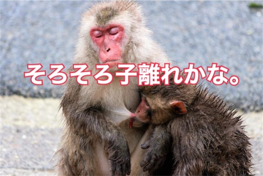f:id:shigechikun:20201021201727j:image